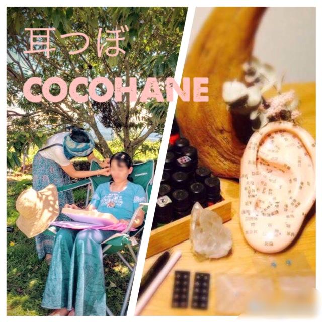 cocohane